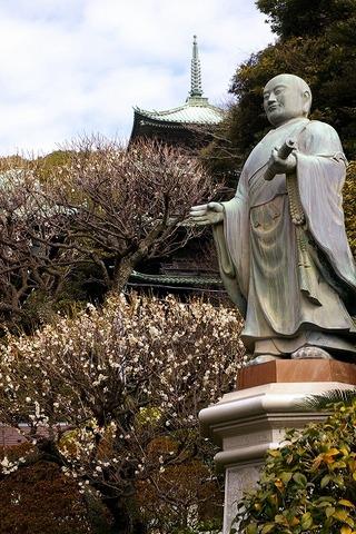 Ryukojihakubai100214_2