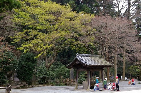 Myohonjisinryoku100323