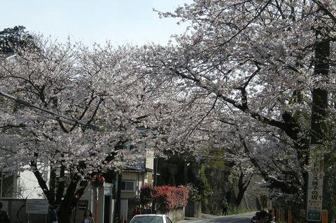 Kamakurayama1004032