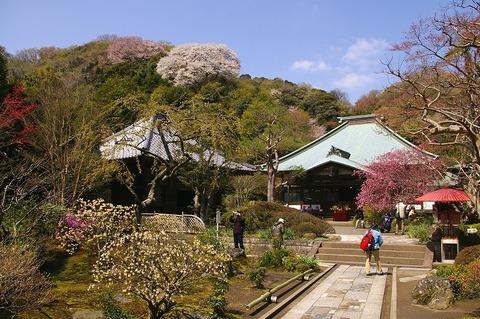 Kaizojikeidai100408