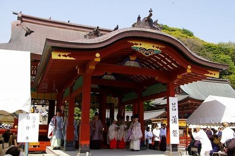 Hachimangushobusai1005052