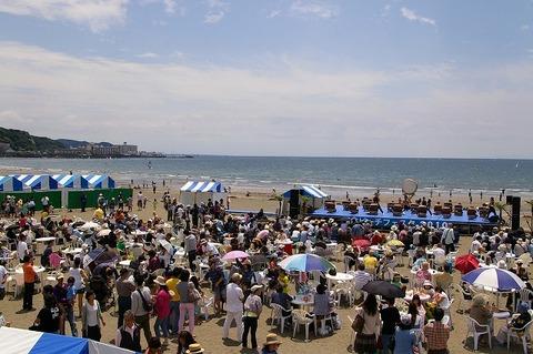 Beachfesta1005163