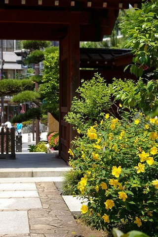 Daigyojikinsibai100612