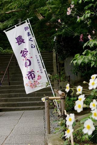 Hasenoichi1010173
