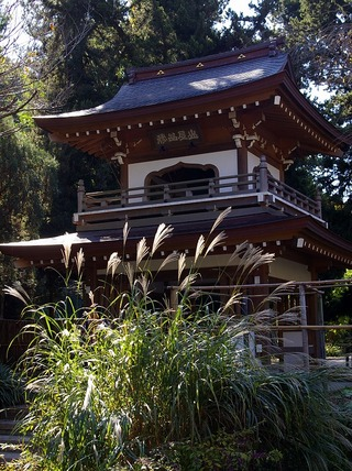 Jochijisusuki101105