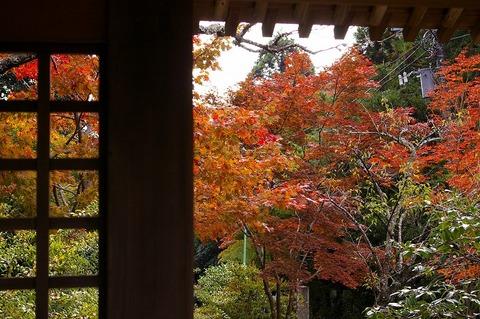 Kaizojikoyo1011154