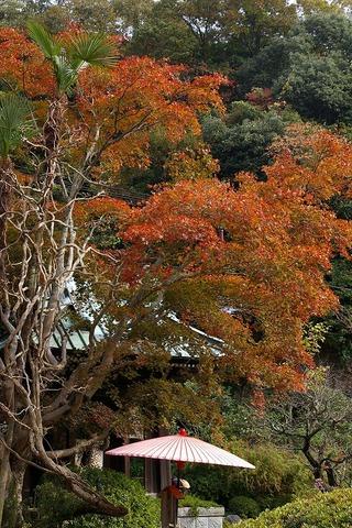 Kaizojikoyo1011155