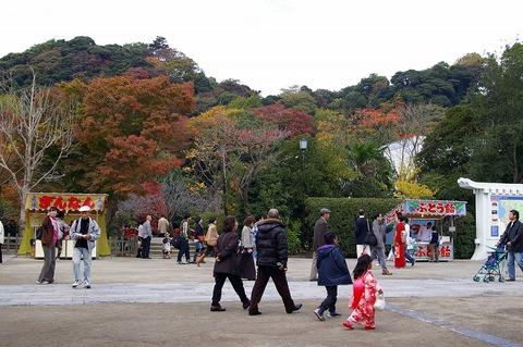 Hachimangukoyo1011212
