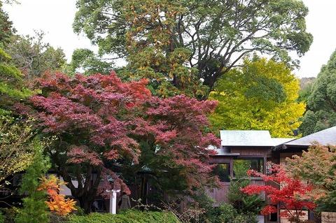 Kamakuragukoyo101121