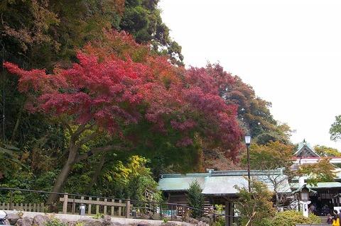 Kamakuragukoyo1011212