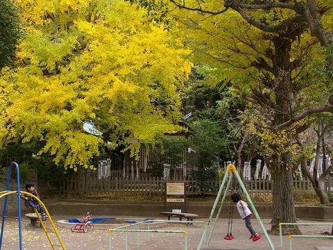 Yoritomokoenkoyo101121