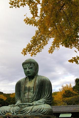 Daibutsu1011234