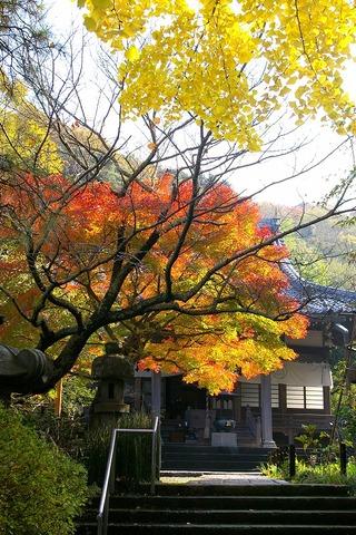 Ankokuronjikoyo101126