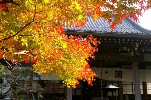 Ankokuronjikoyo1011262