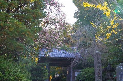 Ankokuronjimonzen101126_2