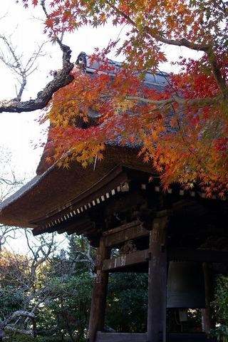 Tokeijikoyo1011298
