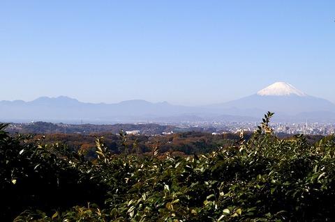 Shojokenfuji101204