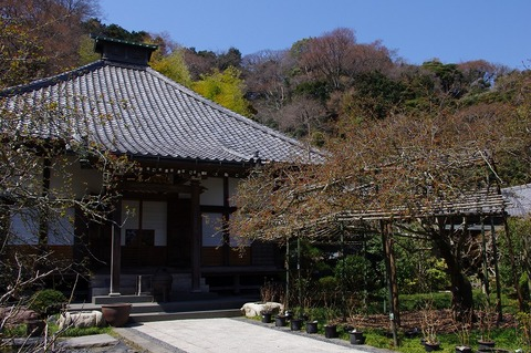 Kosokuji110329