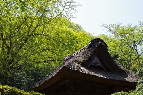 Hokokujisinryoku110425