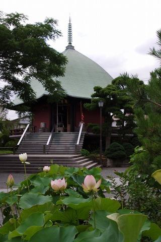 Hongakujihasu110722_3