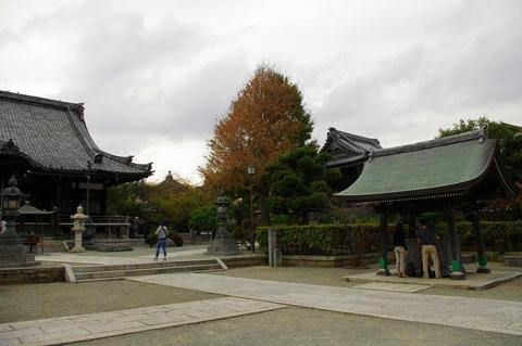 Hongakujiicho111002