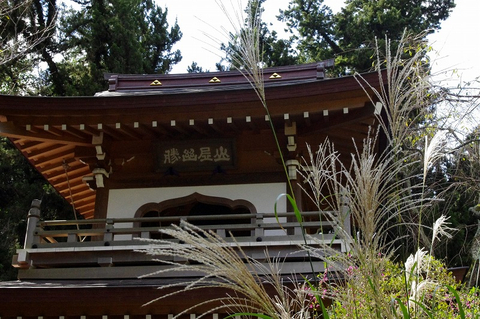 Jochijisusuki111004