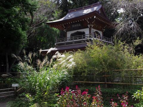 Jochijisusuki1110042
