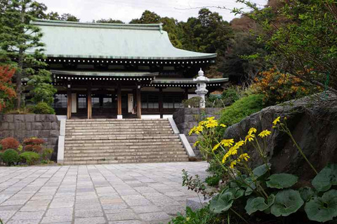 Ryuhojituwabuki111109