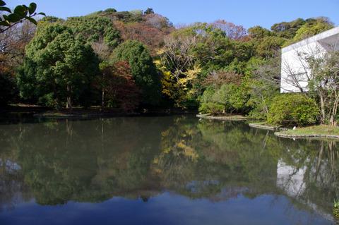 Hachimangukoyo111123