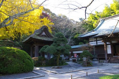 Hokokujikeidai111205