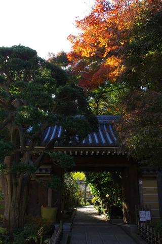 Hokokujisanmon111205