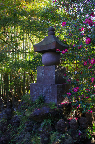 Hokokujisazanka111205