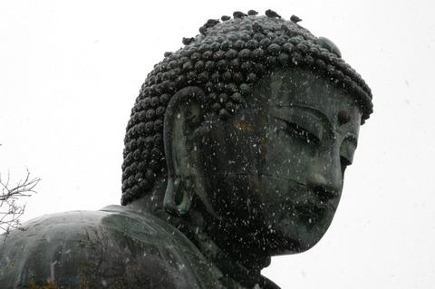 Daibutu1201202