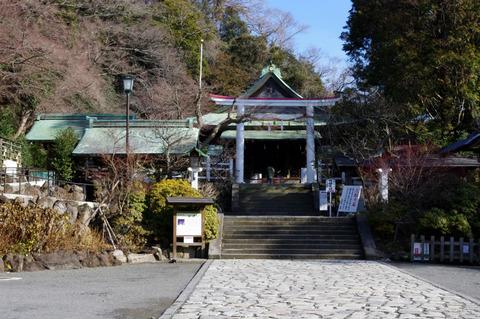 Kamakuragu120125