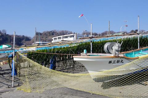 Wakamehosi1202173