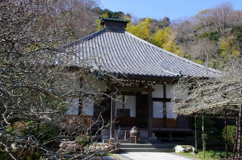Kosokuji120303