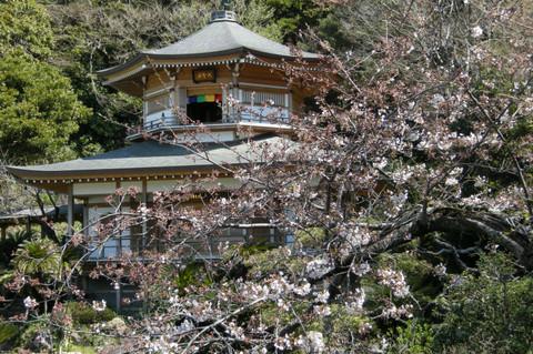 Komyojidaiseikaku120407