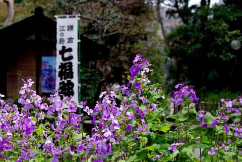Jochijishokassai120410