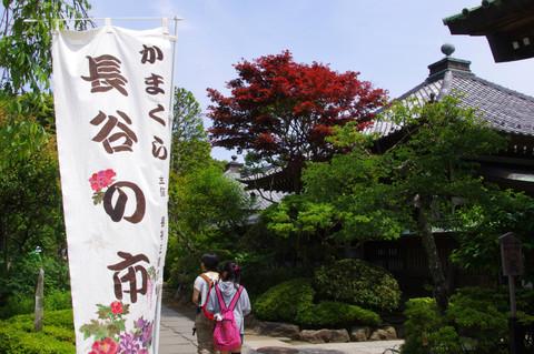 Hasenoichi120520