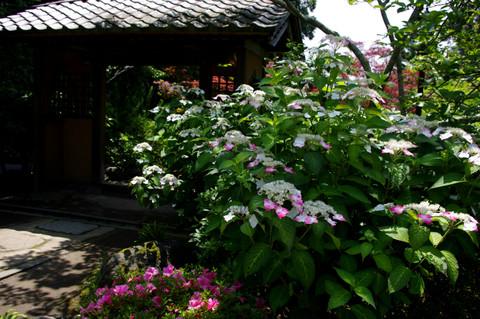 Kaizojibenigaku120614