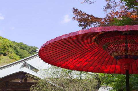 Kaizojikasa120614