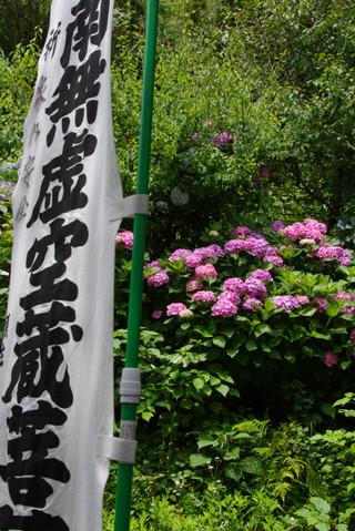 Kokuzodoajisai120627