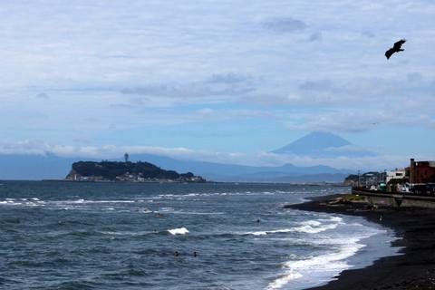 Inamurafuji120816