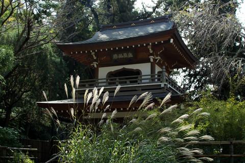 Jochijisusuki121017