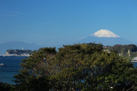 Komyojifuji1211102