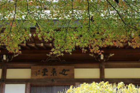 Hokokujikoyo121201