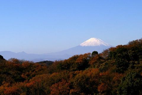 Hansobofuji101204