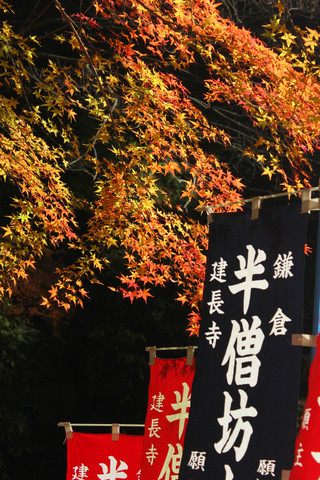 Hansobokoyo121207_2