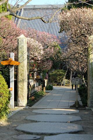 Hokaijiume1303045