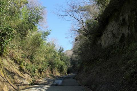 Asainakiridosi130312